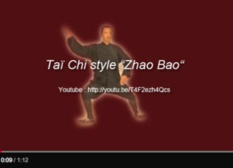 Taï Chi - style Zhao Bao