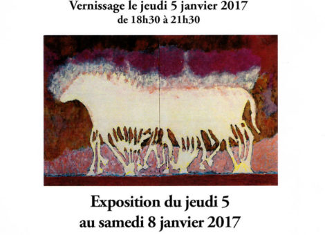 2017 janv.- Expo Centre Anim'Arras - Paris
