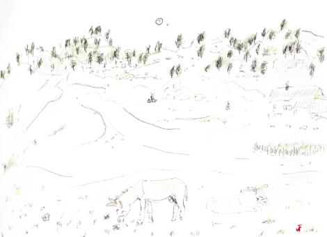 La lune et un âne à chaumailloux